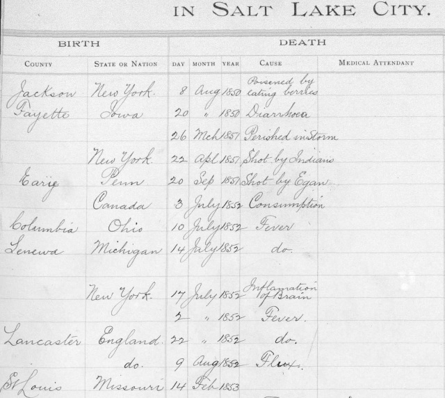 Causes of death from Salt Lake County Death Records.